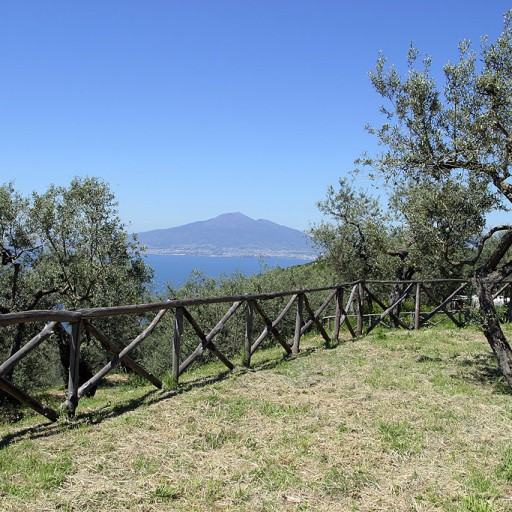 farm-holidays-sorrento-04