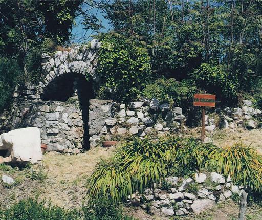 fattoria-didattica-vico-equense-03